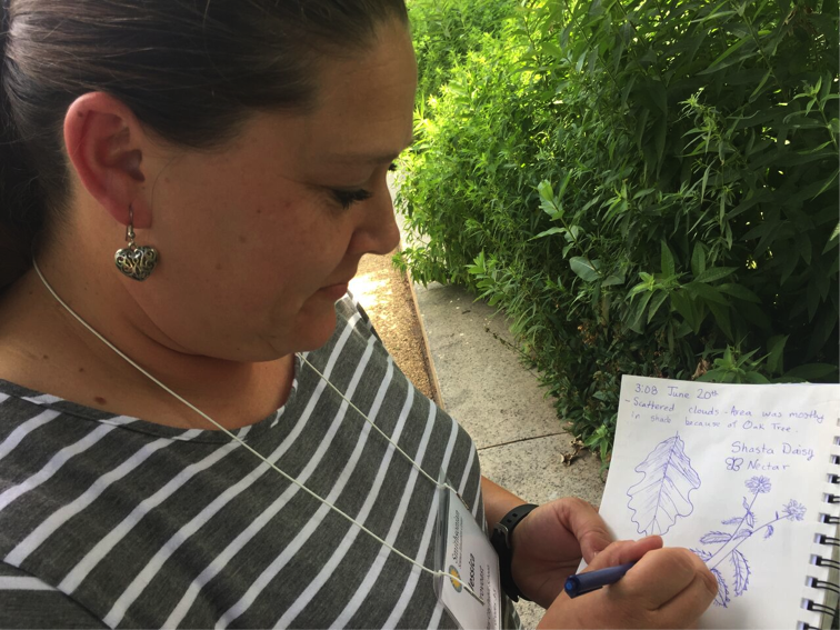 While in the Smithsonian Pollinator Garden, a participant applies her scientific illustration skills in her journal.
