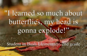 "I learned so much about butterflies, my head is gonna explode"" second grade student quote on picture of fallen leaves"