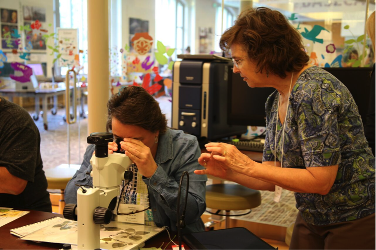 Sally Bensusen instructs a participant on how to use a microscope for scientific illustration.