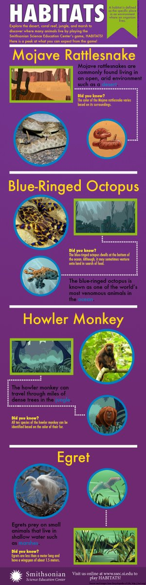 Infographic describing different animals in the Habitats game