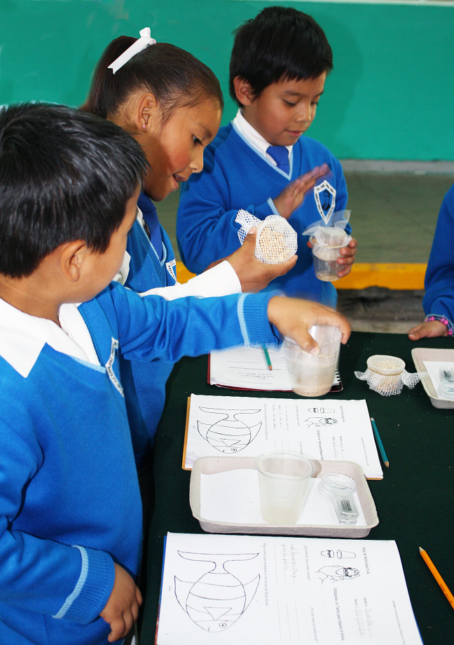 students in Mexico practice scientific skills