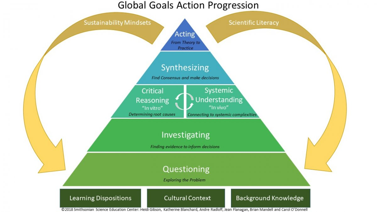 Image of the Global Goals Action Progression chart