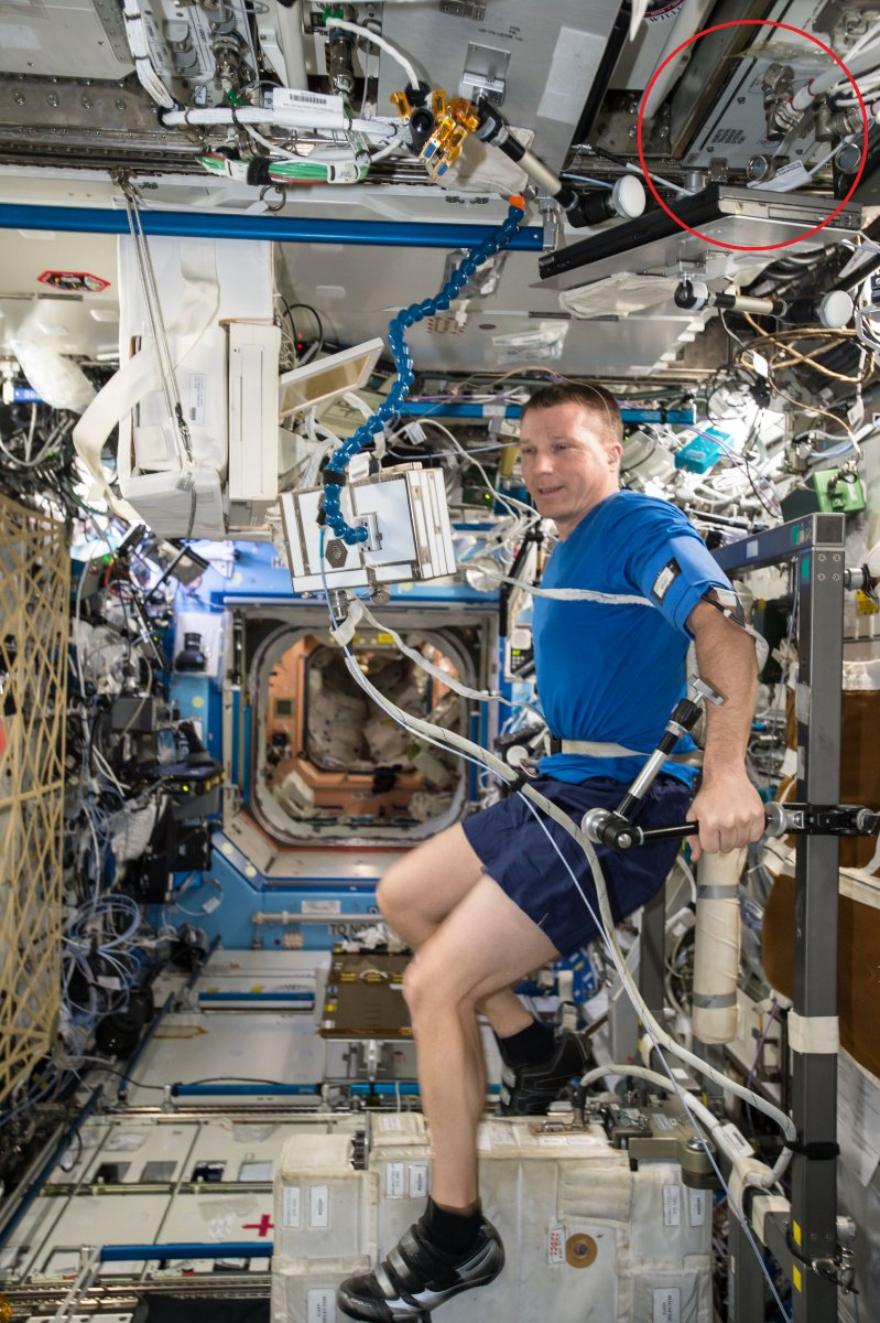 Terry Virts exercises on a bicycle ergometer on the International Space Station.