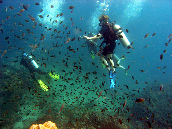 Scuba diver swimming with fish