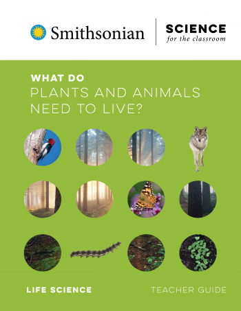What Do Plants And Animals Need To Live?