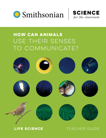 How Can Animals Use their Senses to Communicate