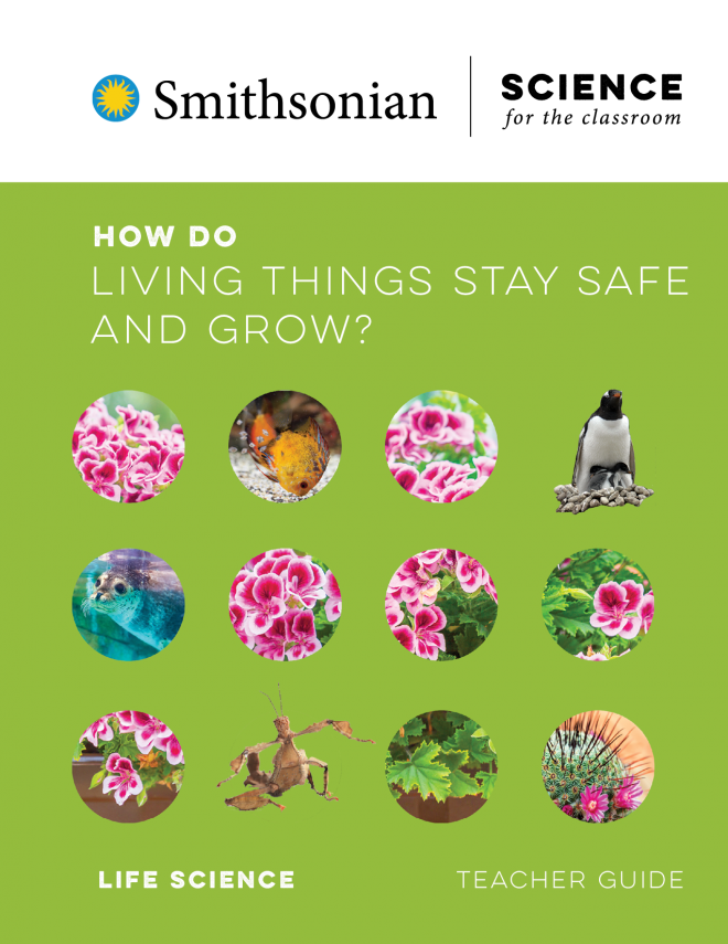 How Do Living Things Stay Safe And Grow?