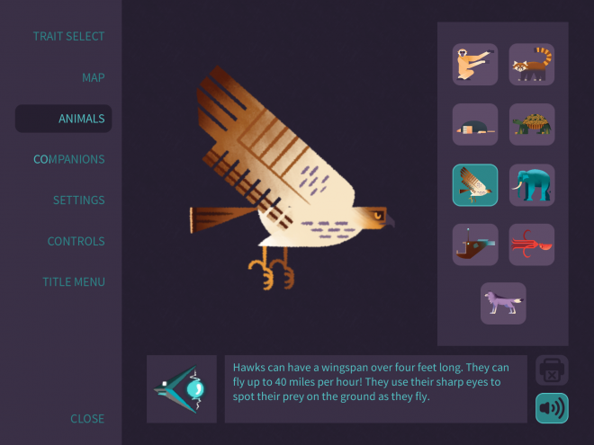 Screenshot of an educational screen from the game, Morphy. Screen shows a hawk along with the definition.