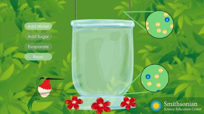Sugar Simulation screenshot